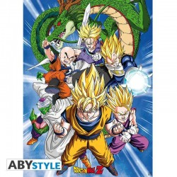 Poster Dragon Ball Cell Saga 52x38