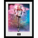 Cadre Stand Collector Print DC Comics Suicide Squad Harley Quinn 30x40cm
